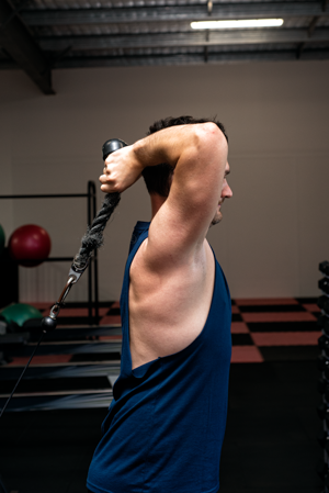 Llew overhead tricep exercise